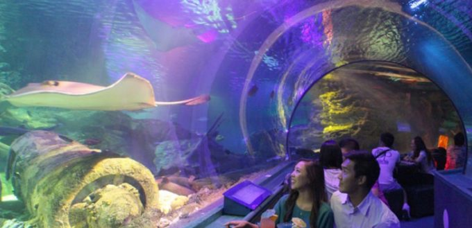 關島海底世界水族館晚餐