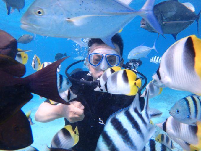 魚眼公園體驗潛水