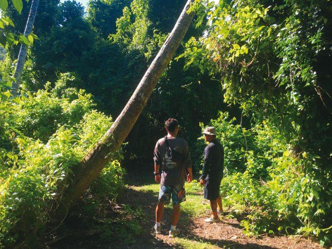 生態徒步探險之旅